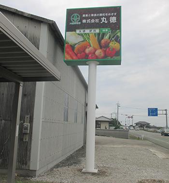 株式会社丸徳様-実物を見ると、色合いも綺麗で見入ってしまいます(*´▽`*) 写真の野菜たちが美味しそう('ω')